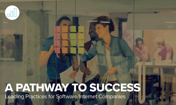 NetSuite Software Industry