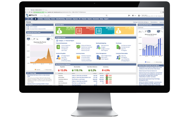 Computer Desktop with NetSuite ERP platform displayed, Simply Noelle, NetSuite Case Studies