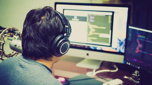 NetSuite developer, adult-apple-device-business-code