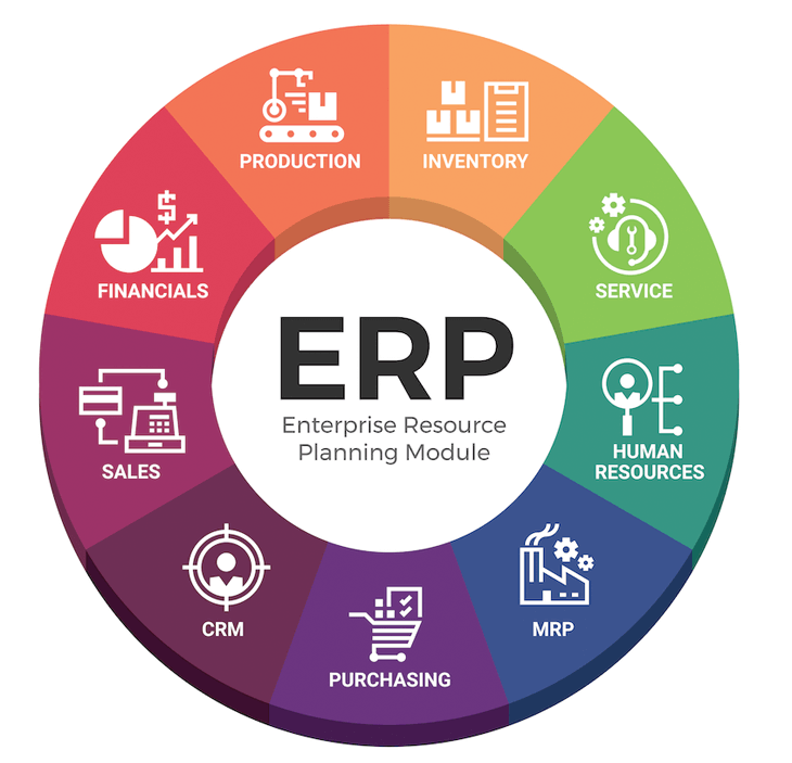 ERP pinwheel, what is NetSuite